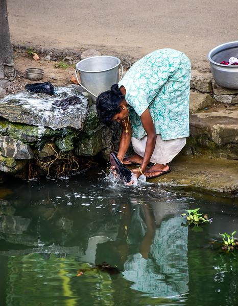 Kumarakom - routine cleaning in the fresh waters