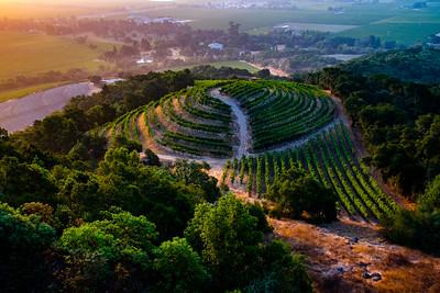 Napa Wine Region RV Photo 2018-002-0551