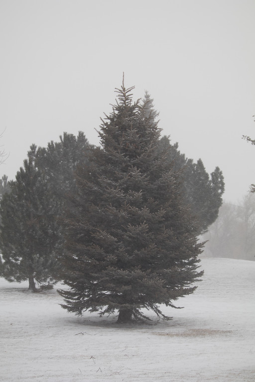 2017 Winter Solstice in Cheyenne, Wyoming