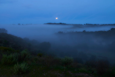 """2018 March Challenge- """"In the Misty Moonlight"""""""