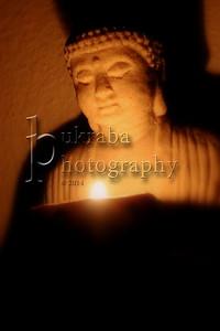 2014 February 08 - Buddha