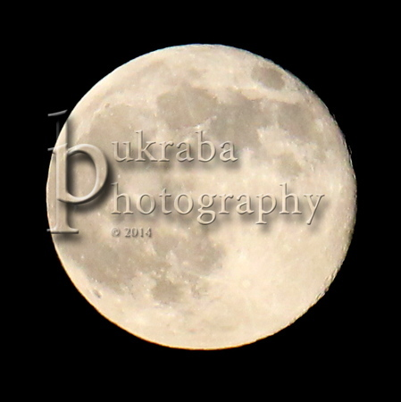 2014 July 12 - Supermoon