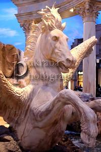 2014 March 26 - Pegasus