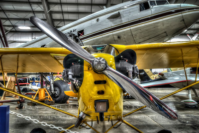Piper J-3 'Cub' nose