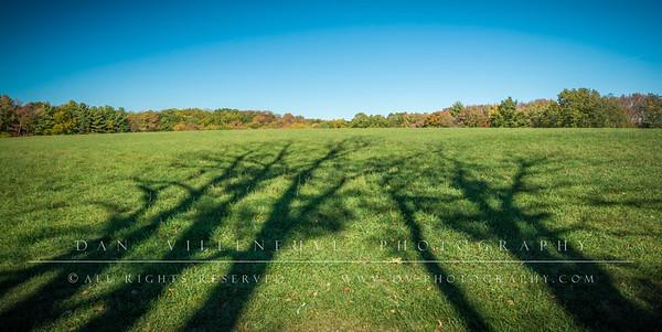 Long Meadow Farm