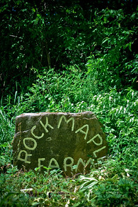 Welcome to Rock Maple Farm! This etched stone greets you upon arriving.