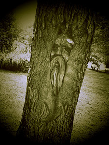 Tree Spirit Jeremy Rochman Memorial Park (Carbondale, Illinois)  Little Photo