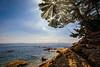 Uraga Shores