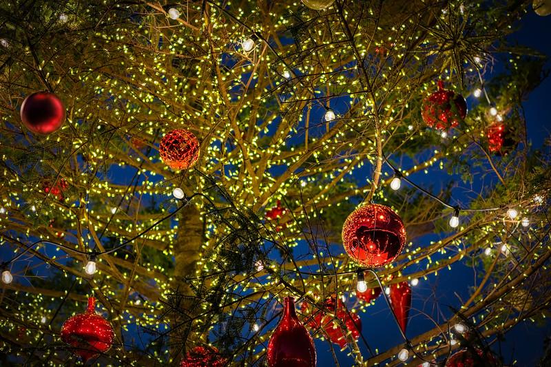 Yokohama Christmas Tree