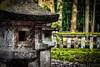 Toshogu Grounds 3