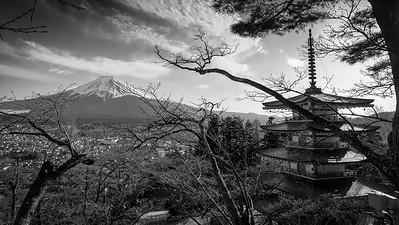 Chureito Pagoda 6
