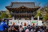Taiko Drum Festival
