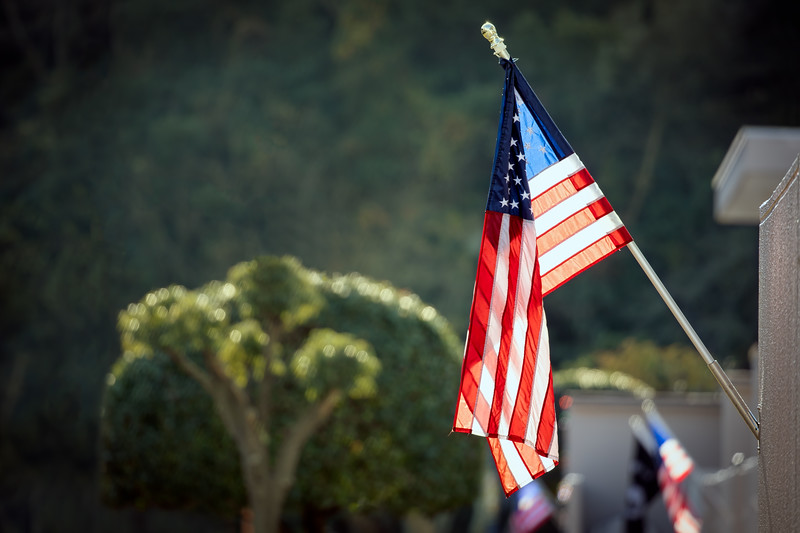 Flags 119
