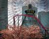 Cosmo Clock Cherry Blossoms