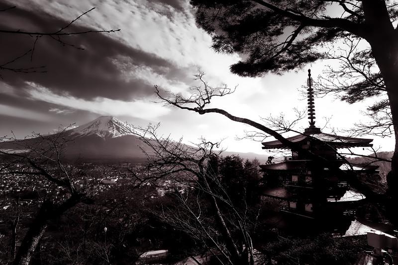 Chureito Pagoda 5