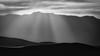 Desert Rays