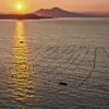 Fishermen of Naples