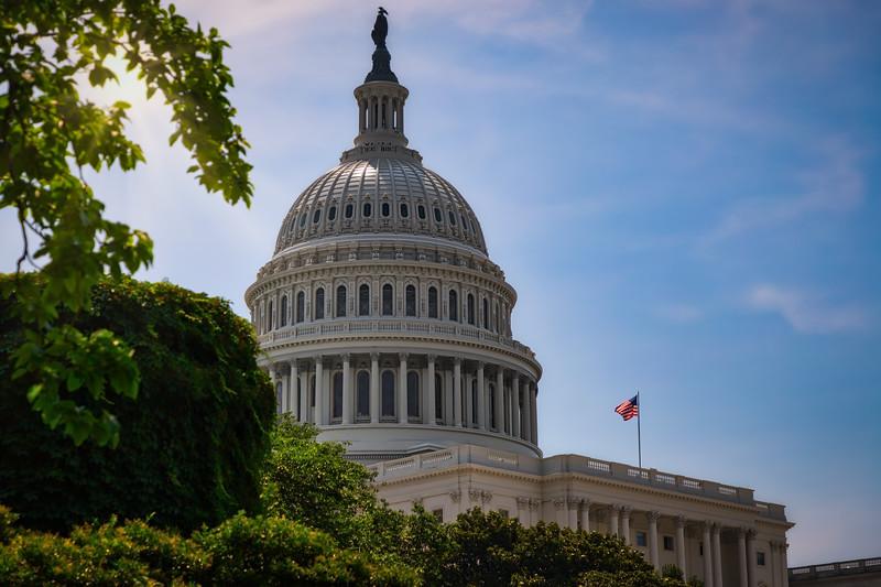 US Capitol 31