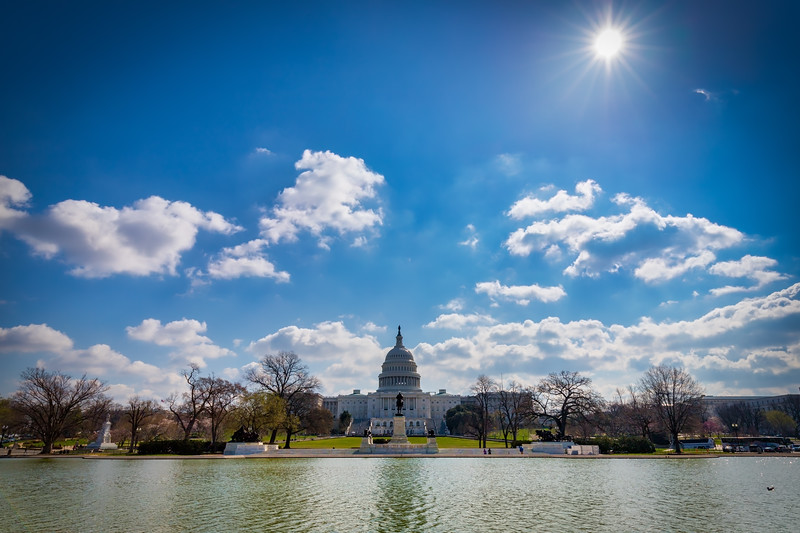 Capitol Pool