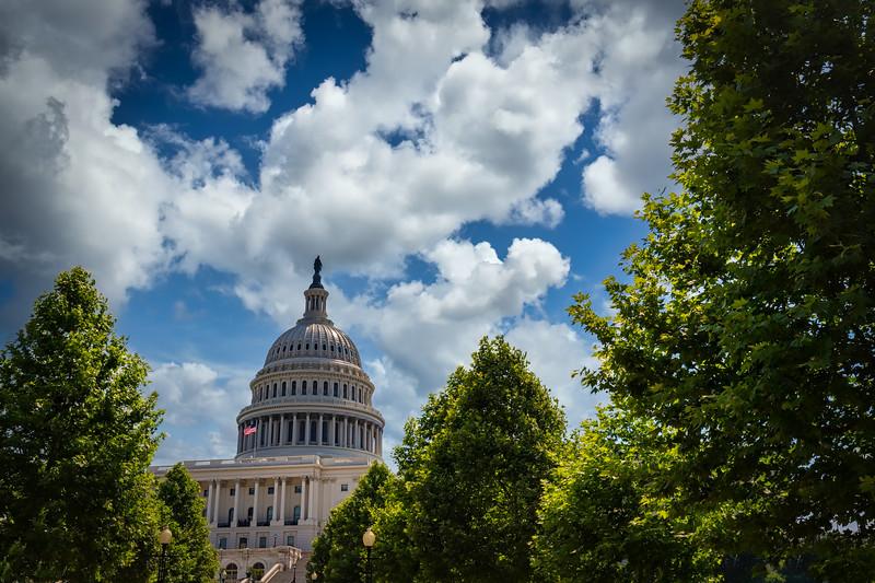 US Capitol 36