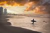 Coronado Surf