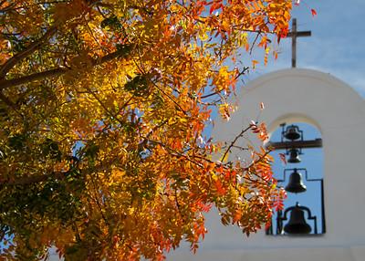 San Elli Autumn