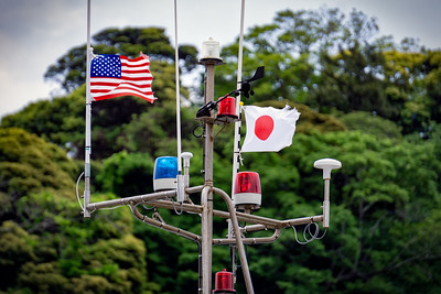 American Japanese Flags 1