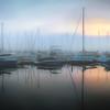 Cove Fog
