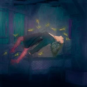 Sleeping with Fairies