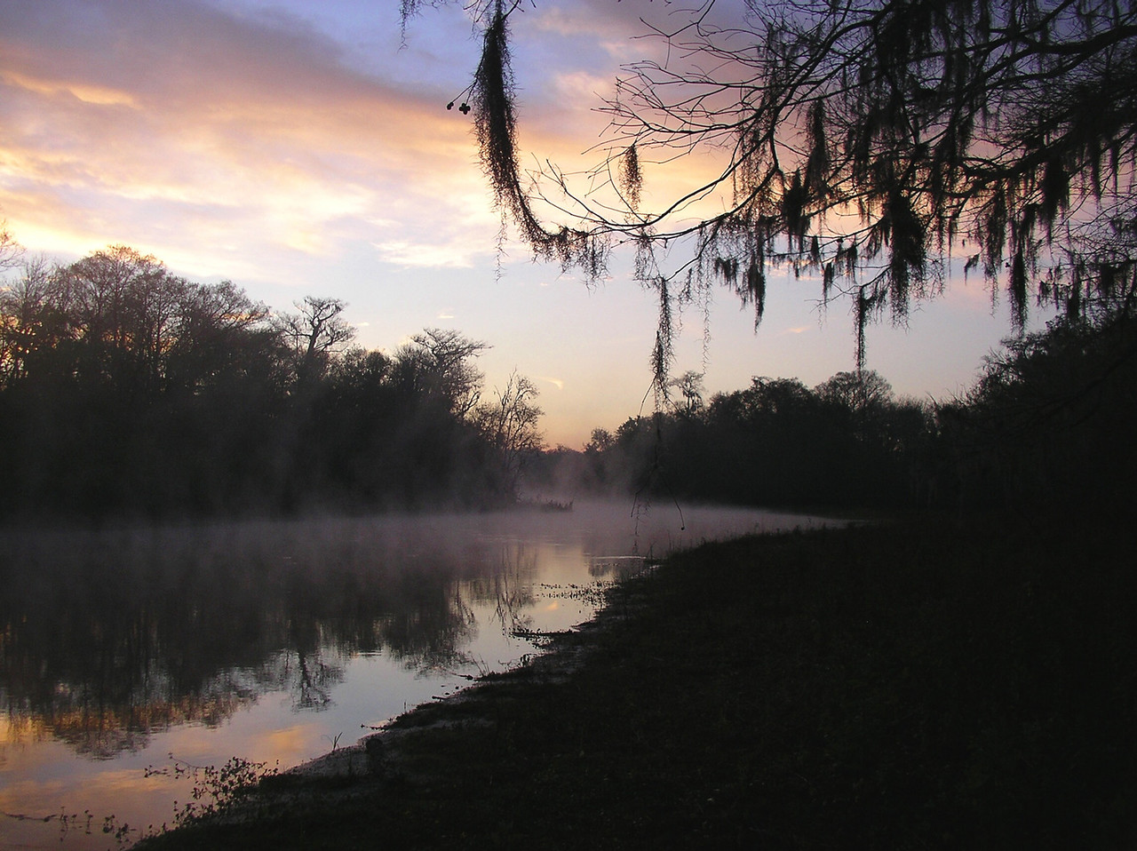 THIRD PLACE: TRAILSIDE TREASURE<br /> <br /> Potts Preserve -  Misty Morning Coffee<br /> PHOTO BY Ian Brown