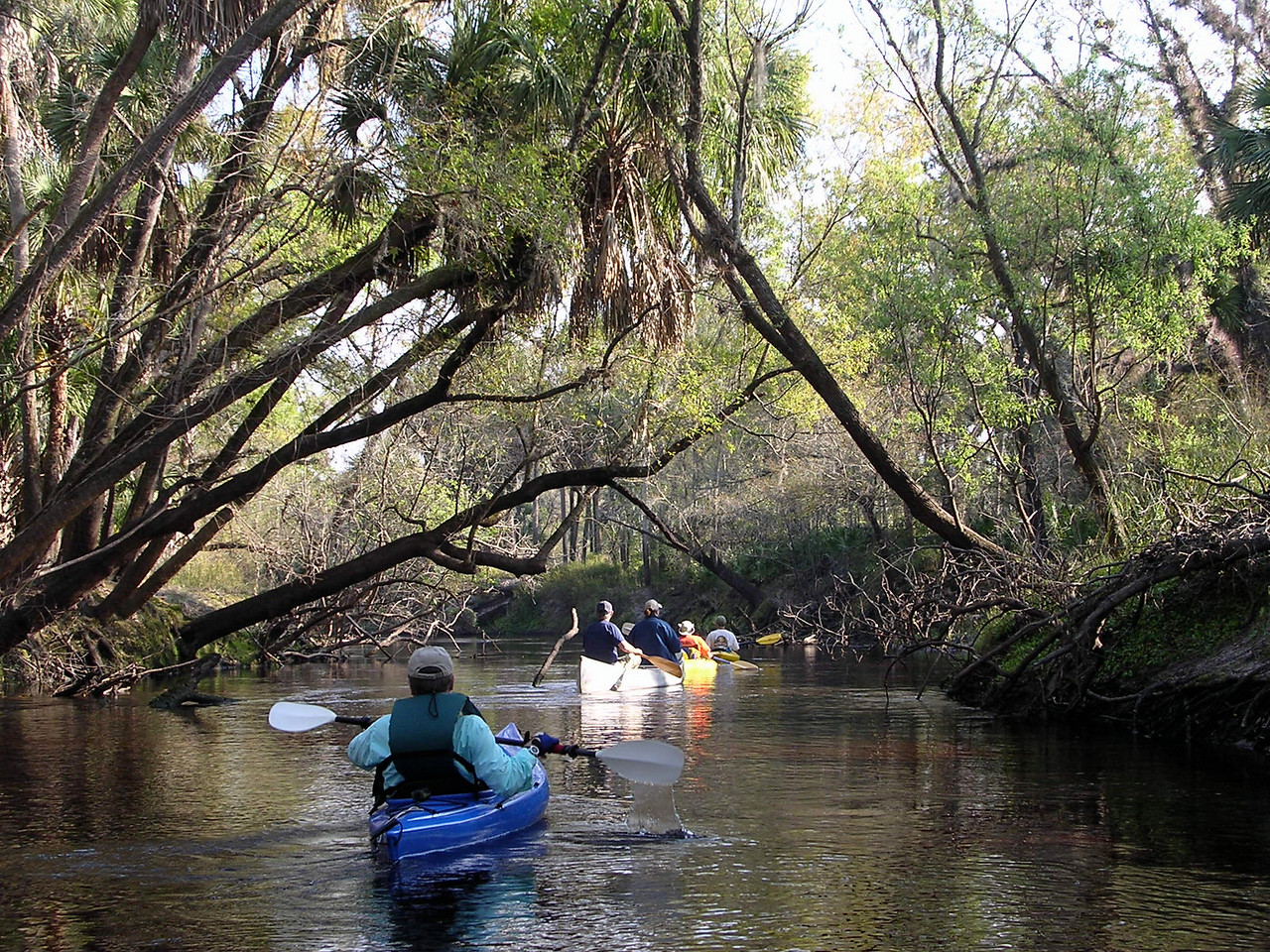 THIRD PLACE: TRAIL MOMENTS<br /> <br /> Paddling the Little Big Econ<br /> PHOTO by Pam Hale