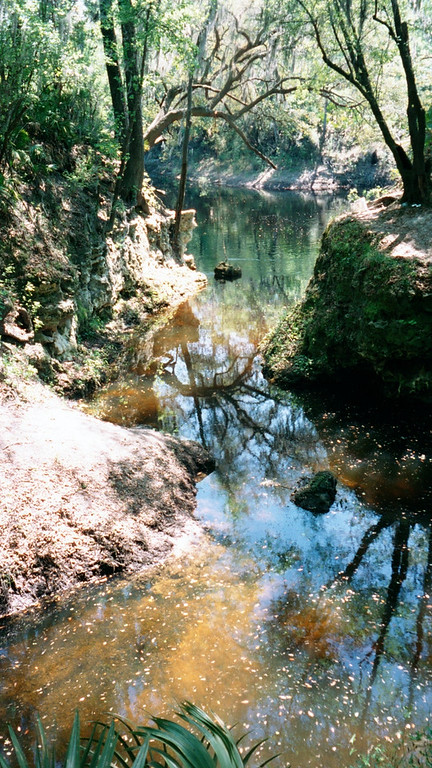 The clear still waters of Swift Creek show the bottom<br /> PHOTO by Marcus Garrett