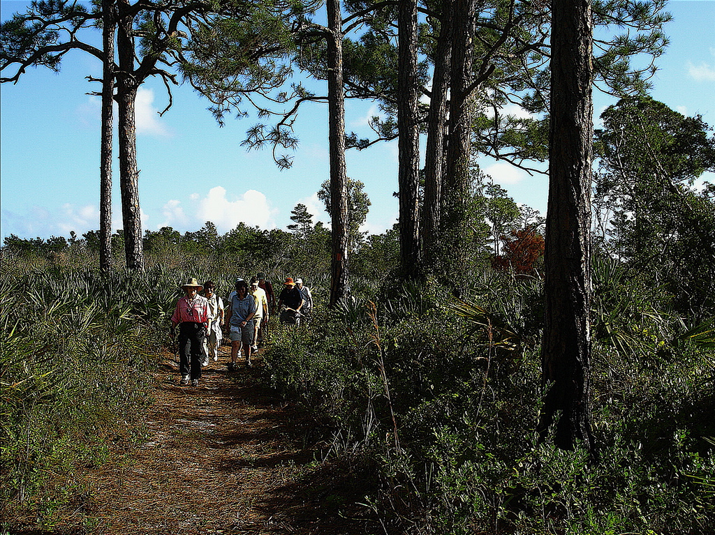 Hikers in Jonathan Dickinson State Park<br /> PHOTO by Gordon Johnson