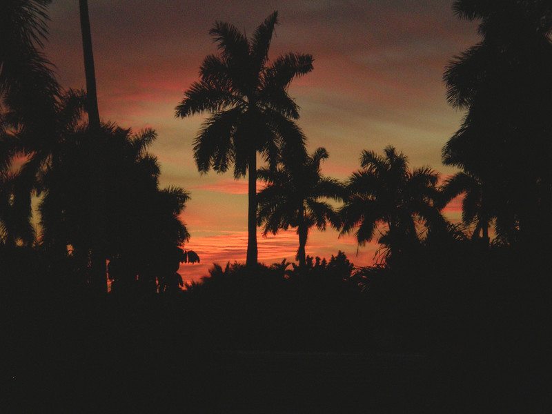 Sunset at Fakahatchee <br /> PHOTO by Allan Young
