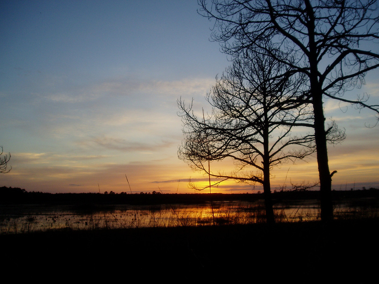 Sunset at Hopkins Prairie <br /> PHOTO by Wayne Petrovich