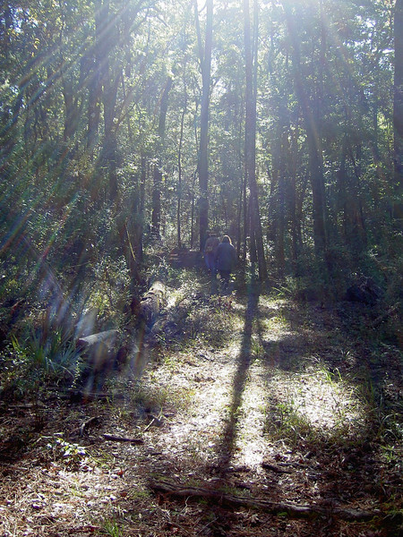 Hike in Edward Ball Wakulla Springs State Park<br /> Photo by Richard Graham