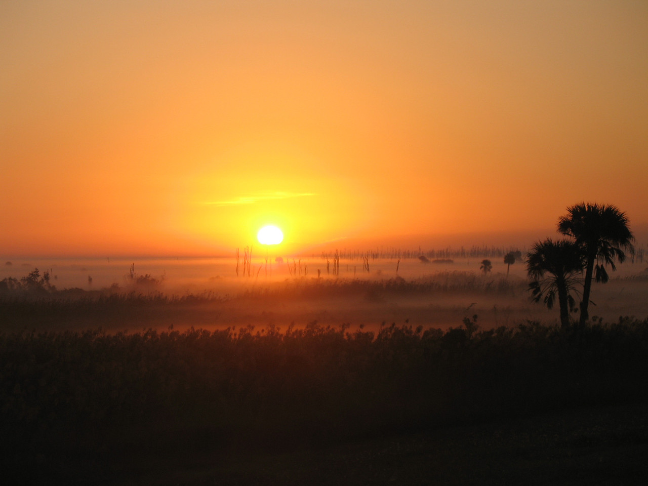 Sunrise over the Okeechobee marshes<br /> Photo by Sandra Friend