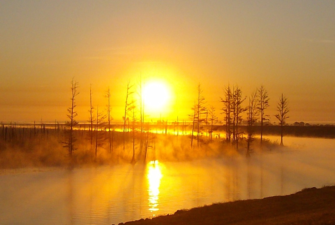 Sunrise at Lake Okeechobee<br /> Photo by Paula Miller