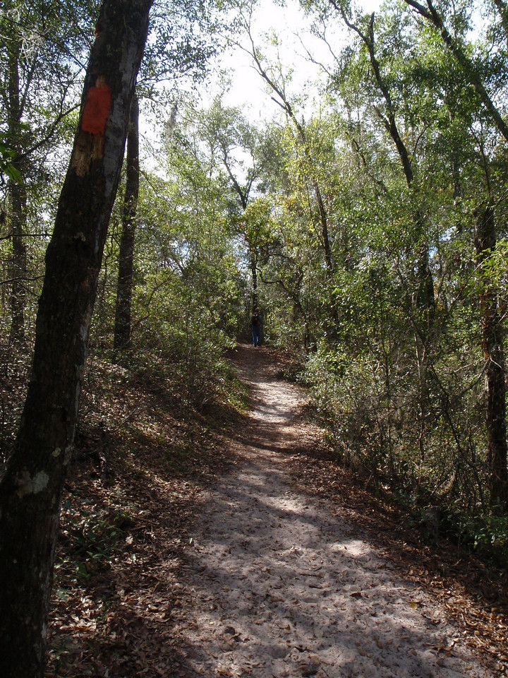 Hiking Goldhead Branch on the Florida Trail<br /> Photo by Sharon Dudley