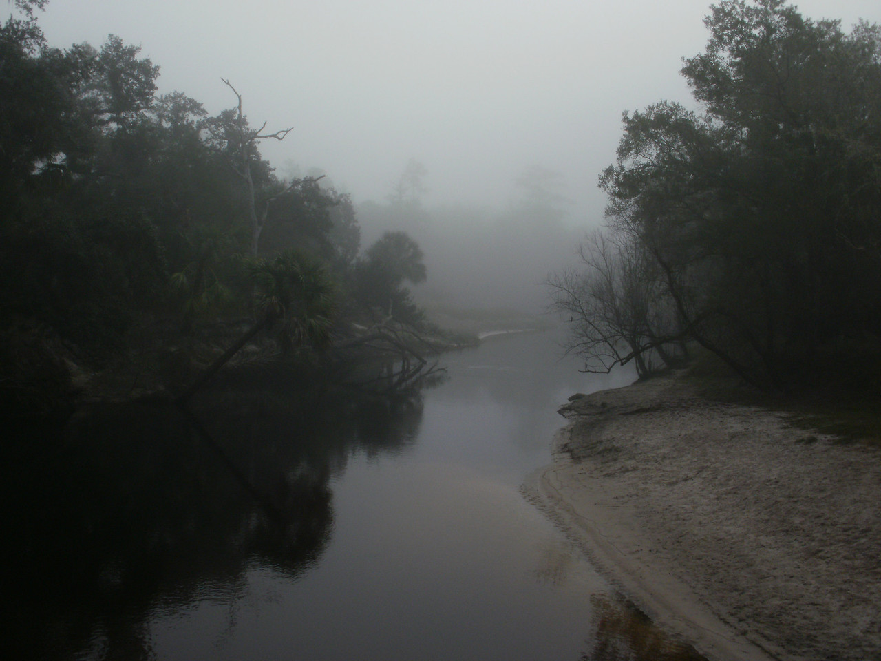 Foggy Morning on the Little Econ River<br /> Photo by Joel Kaiser