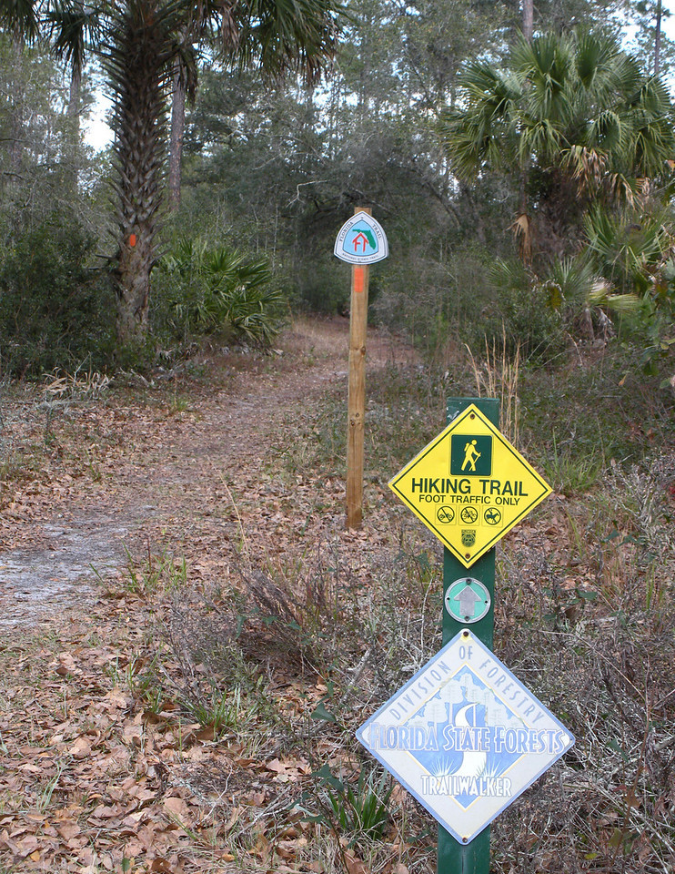 South Seminole Trailhead, Wekiva<br /> Photo by Ed Selby