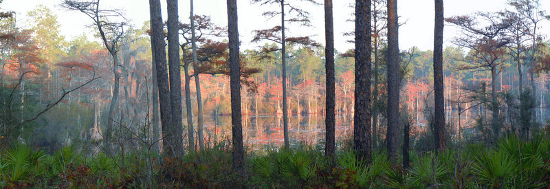 The Beauty of Fall, Bonnet Pond<br /> Photo by Ed Selby