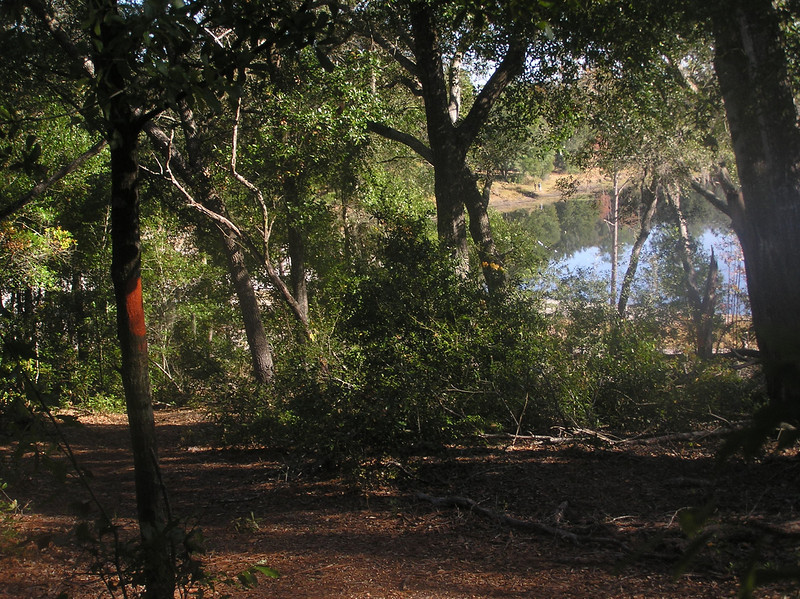 Along the Florida Trail, Gold Head Branch State Park<br /> Photo by Bobby Judah