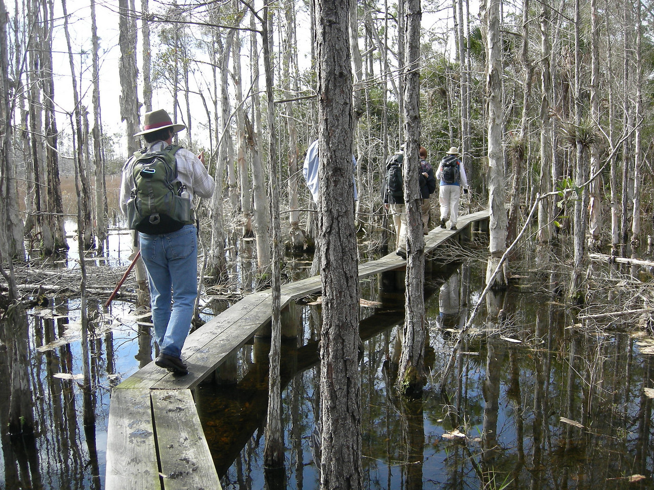 Loxahatchee Slough, OTL day hike<br /> Photo by Winnie Lo