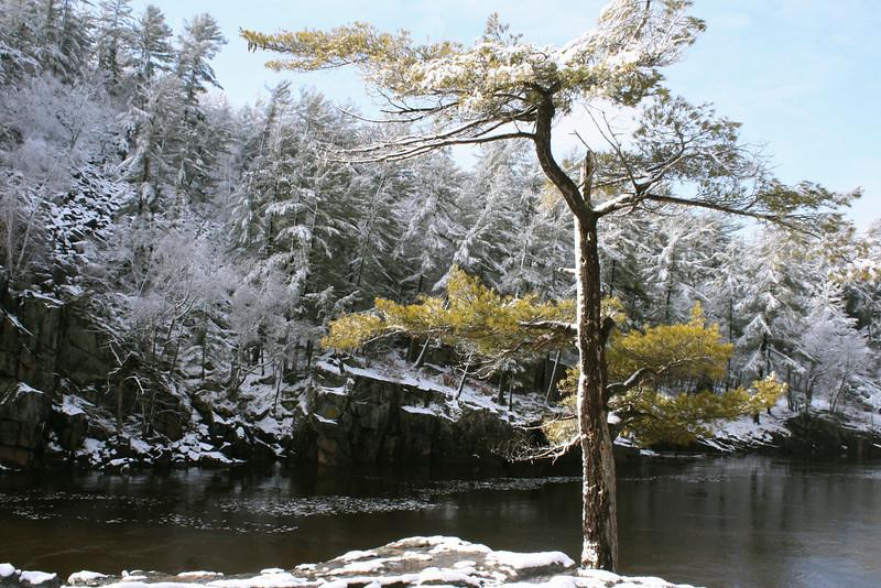 Dalles Winter Scene (Second Place Winner: Adult Landscape)