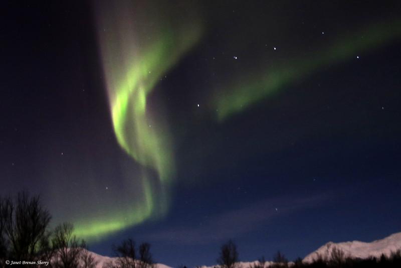 Ribbon Aurora above the Arkose Ridge