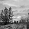 Winter farmscape. 8x12