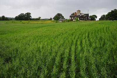 Garfield Farm Museum
