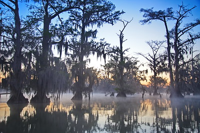 03152018_Lake_Martin_Lafayette_LA_Sunrise_Cypress-Trees_750_5507