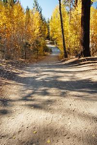 Hiking trail in Fallen Leaf Lake area